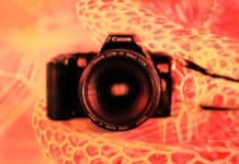 Choosing-a-3D-Vision-Camera