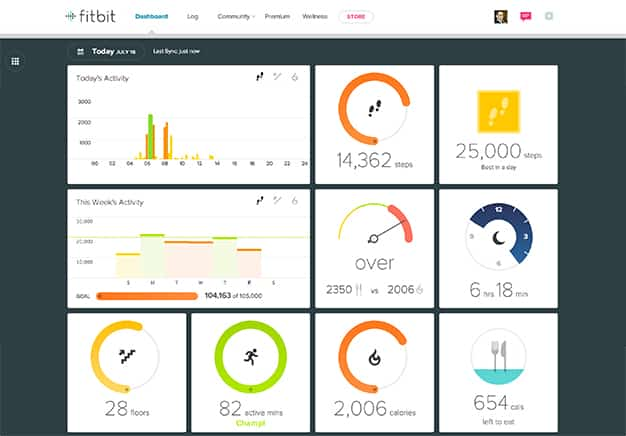 Fitbit dashboard - Data visualization example