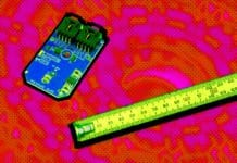 Image of a MEM and a ruler
