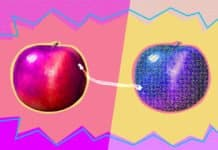 """Image of an apple and it's """"digital twin"""""""