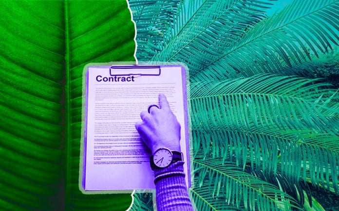 Plants and a Contract document