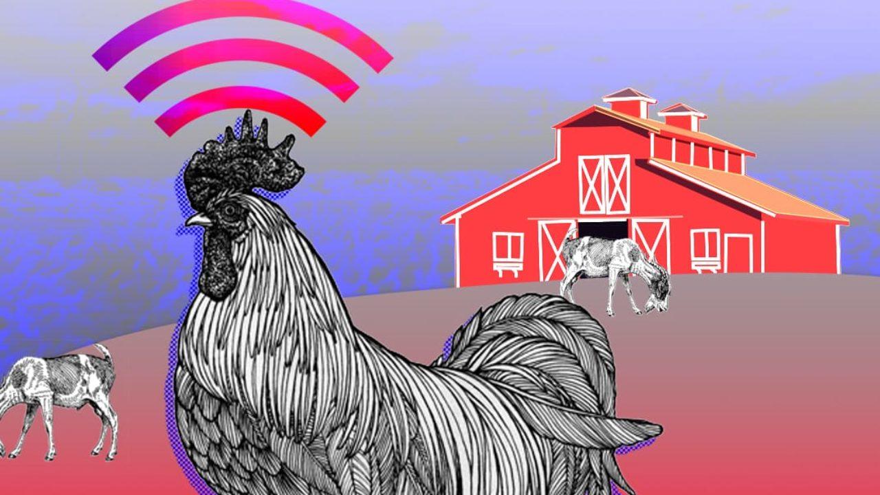 AI, Robotics and the High-Tech Farm of the Future