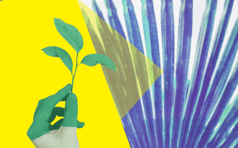 A hand holding a plant and an abstract background of more plants