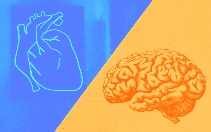 A heart and a brain on an abstract background