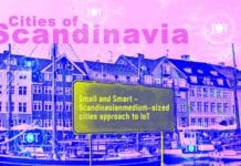 Small and Smart–Scandinavian Medium-Sized Cities Approach to IoT