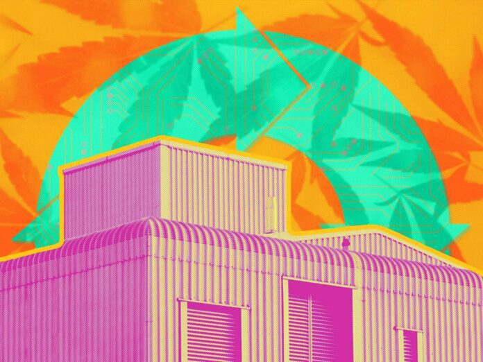 hemp plant automation